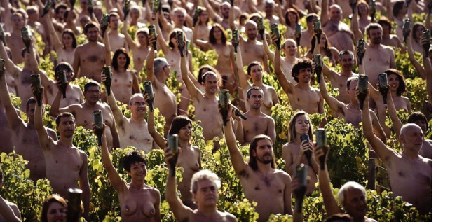 Spencer-Tunick-vineyard