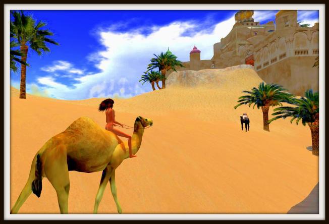 ella camel3_001b