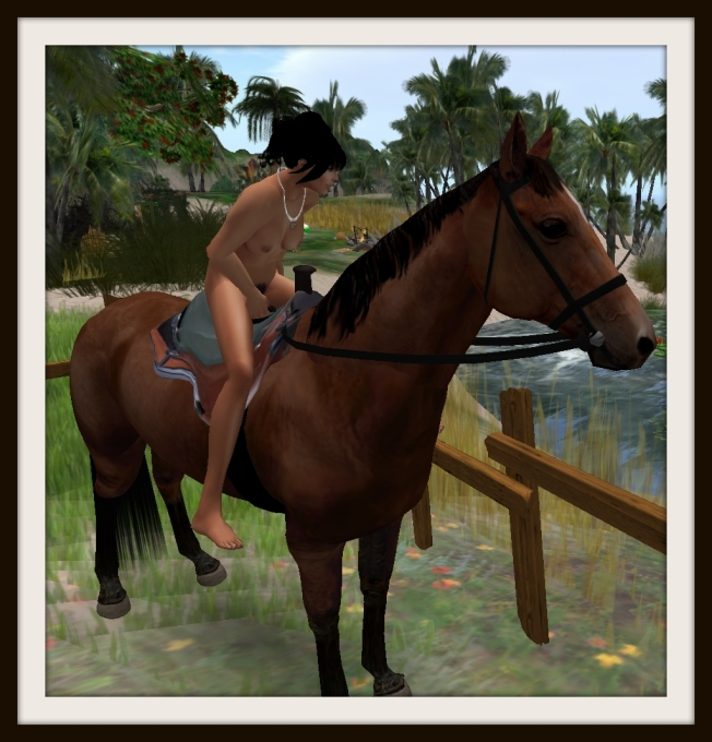 pookes horse2_001b
