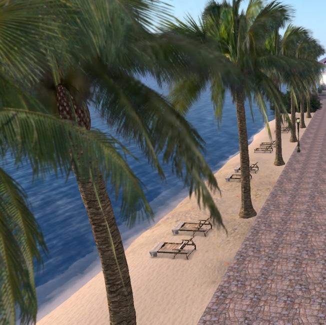 blue lagoon palms_001b