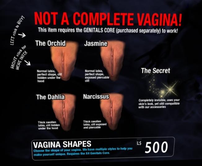 xcite vaginas_001b