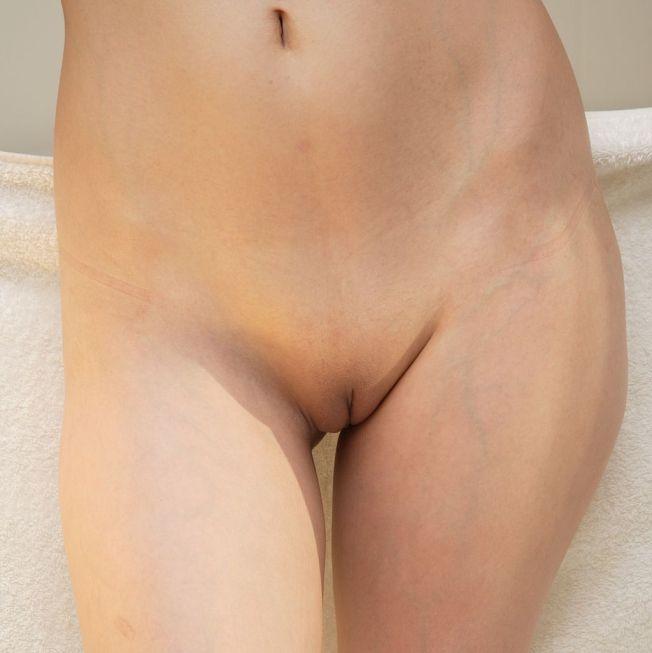 1024px-Female_abdomen_frontal_view