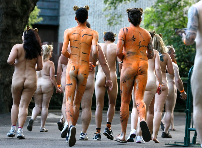 Runners participate in the Streak for Tigers fundraiser at London Zoo, Thursday, Aug. 15, 2013. 300 supporters streaked around London Zoo in support of the ZSL Sumatran Tiger campaign. With only 300 Sumatran Tigers left in the wild, the event was to raise funds, and also highlight and raise the profile of work that needs to be done in order to save the tiger. (AP Photo/Kirsty Wigglesworth)
