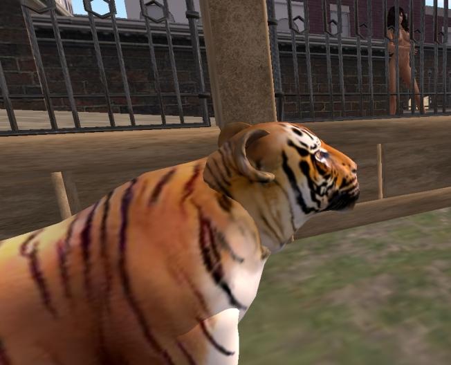 pert zoo3_001b