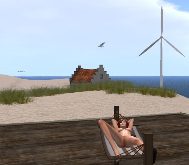 meeuwen strand22_001b