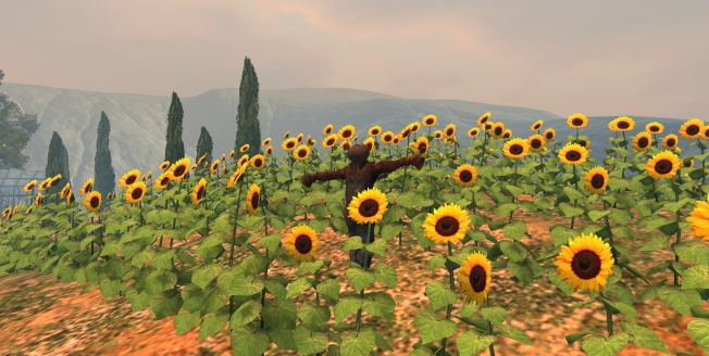 mandy-sunflowers_001b