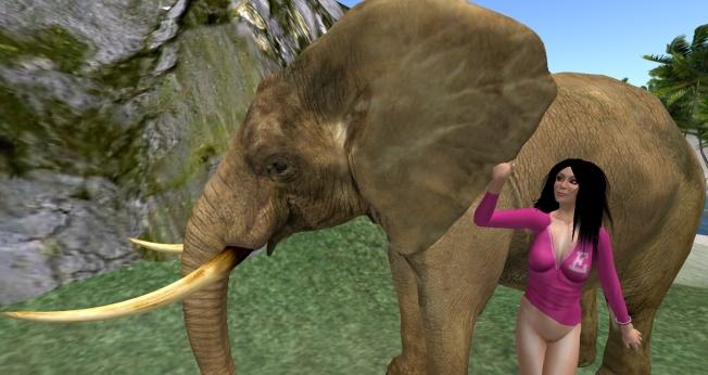 elephant2_001b