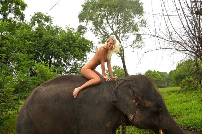 sexy-nude-girl-on-elephant-5448